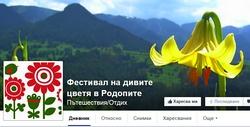 Фестивал на дивите цветя 2015