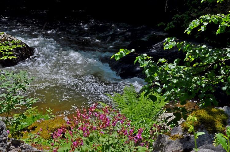 Девинска река