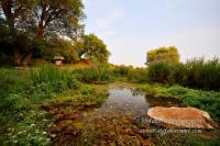 карстови извори край село Безден