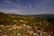село Старцево